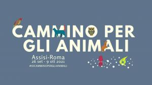 Banner Cammino per gli Animali