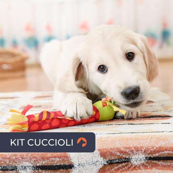 Kit Cuccioli